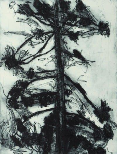Hertha Kluge-Pott   Queenscliff Gallery